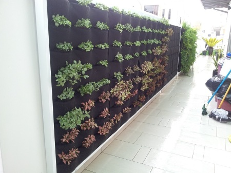 Vertical Garden by Green On Wall